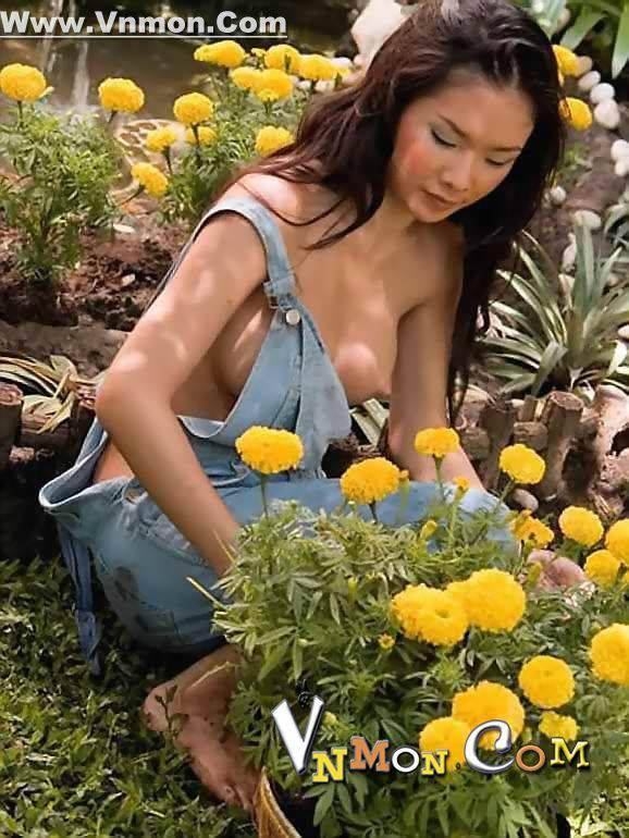 Bông Hoa Vườn Nhà Em
