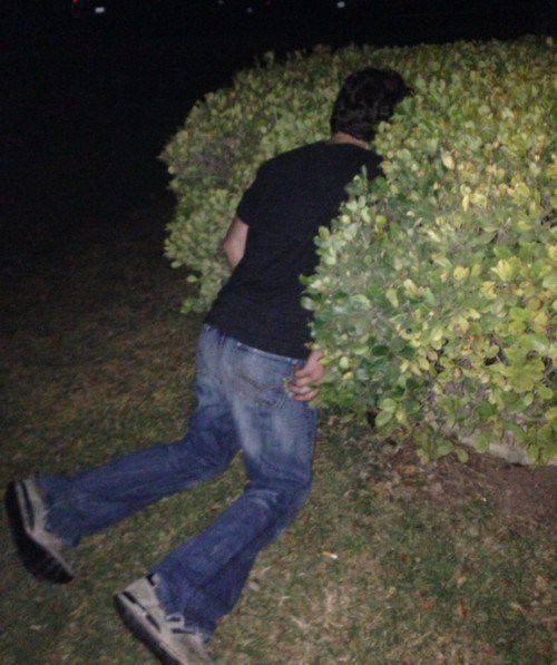 Wpływ alkoholu na człowieka #14 15