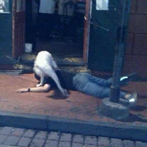 Wpływ alkoholu na człowieka #2 2