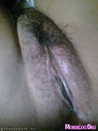 Hinh sex ola