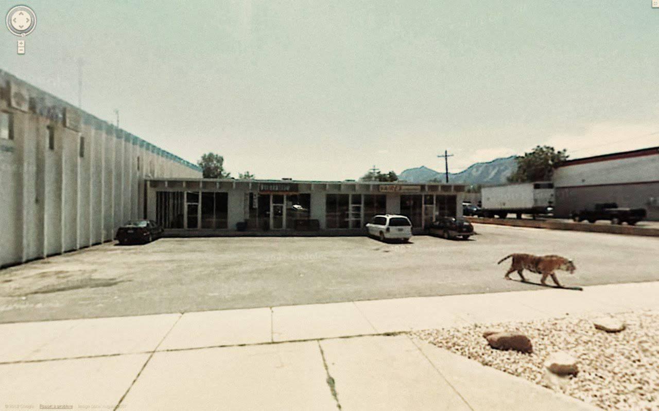 Najdziwniejsze zdjęcia z Google Street View #4 13