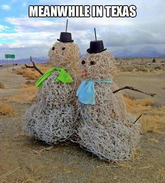 Tymczasem w Teksasie 12