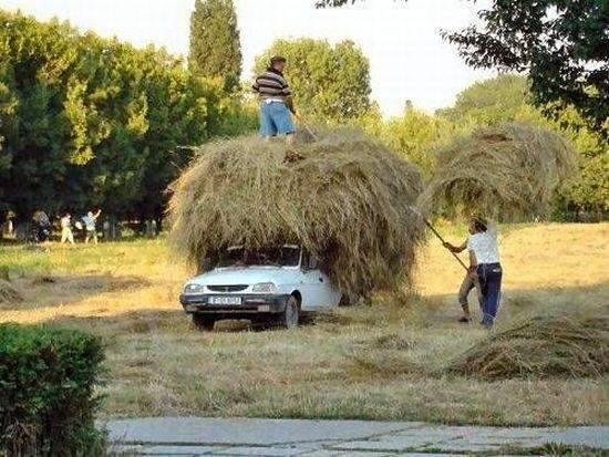 Uroki życia w Rumunii 15