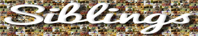 Siblings S01E04 HDTV XviD-AFG