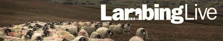 Lambing Live S03E04 HDTV XviD-AFG