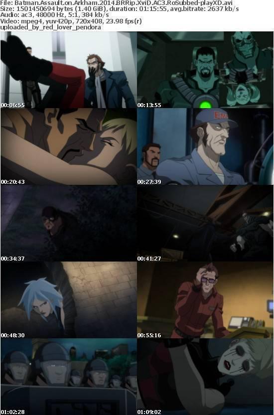 Batman Assault on Arkham 2014 BRRip XviD AC3 RoSubbed-playXD