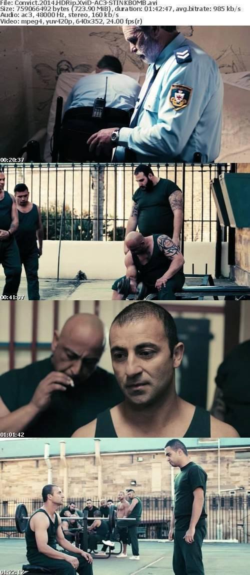 Convict 2014 HDRip XviD-AC3-STINKBOMB