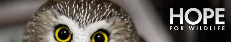 Hope.For.Wildlife.S05E09.720p.HDTV.x264-DOCERE