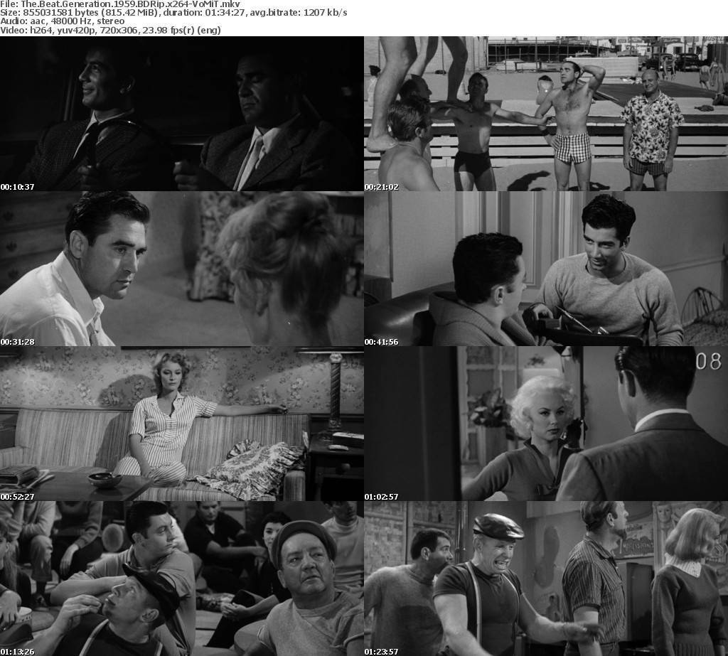 The Beat Generation (1959) Brrip (1Link)