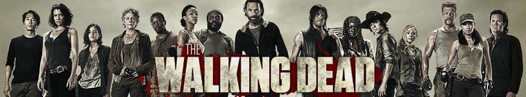 The Walking Dead S06E07 SPANiSH 720p HDTV x264-sPHD