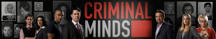 Criminal Minds S11E14 HDTV XviD-FUM