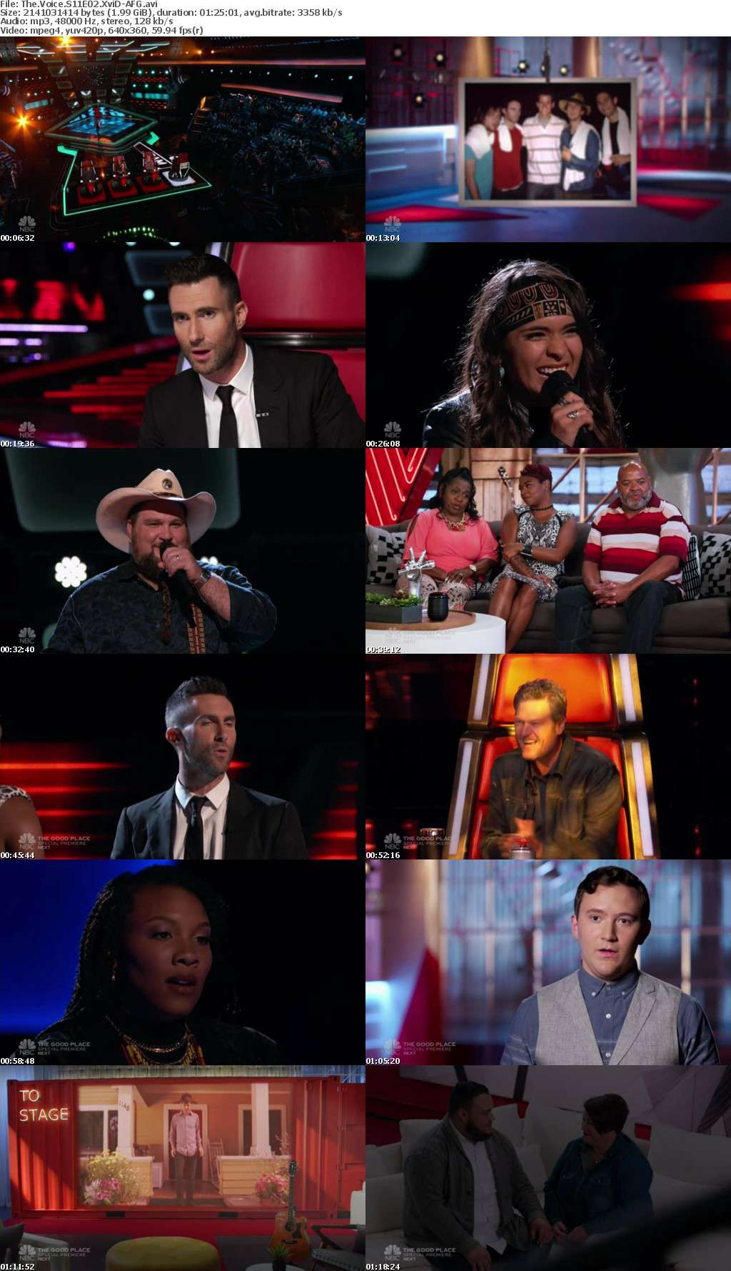The Voice S11E02 XviD-AFG