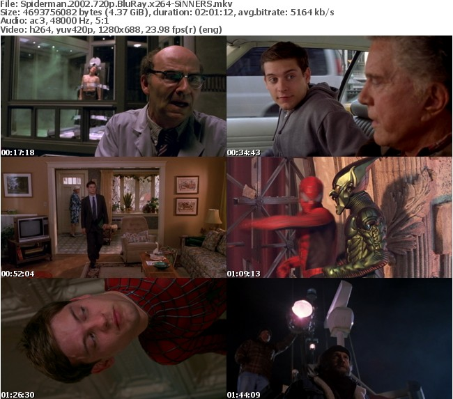 Spiderman 2002 720p BluRay x264-SiNNERS
