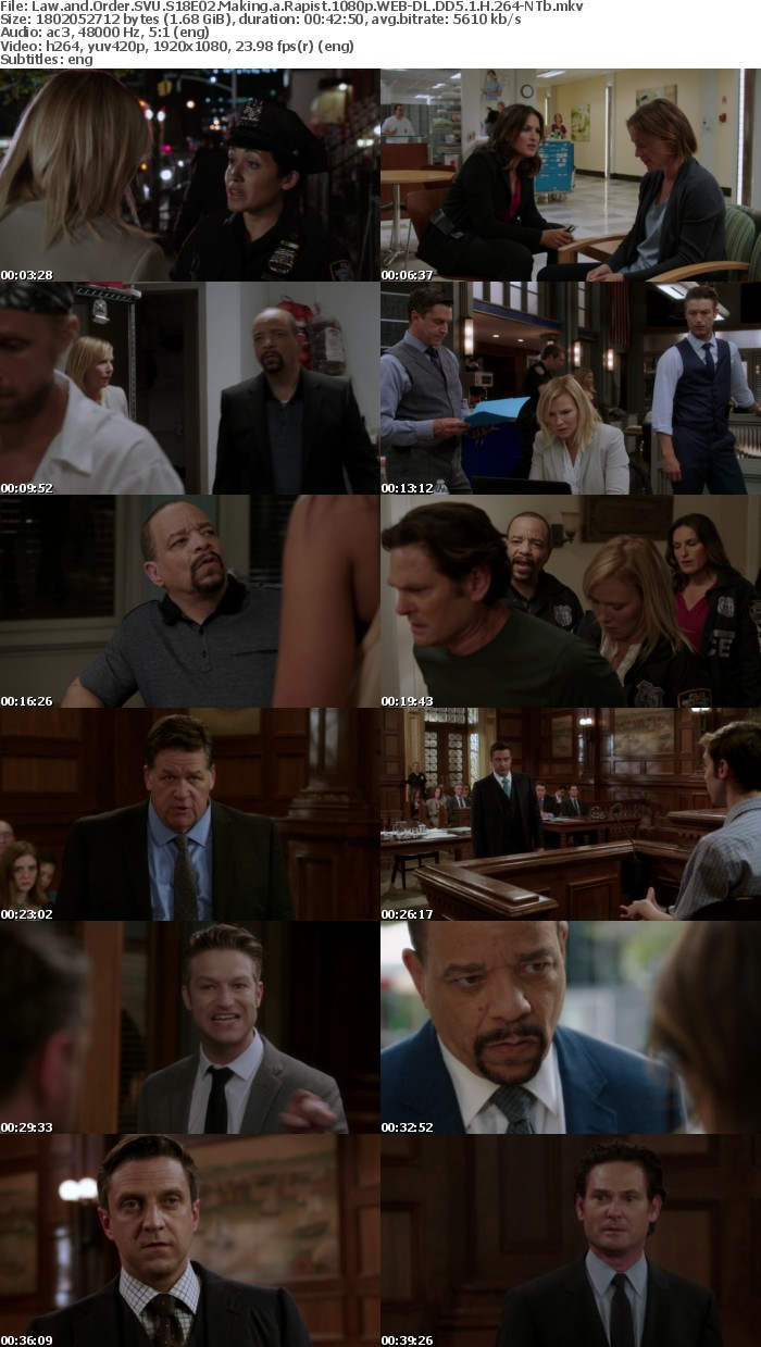 Law and Order SVU S18E02 Making a Rapist 1080p WEB-DL DD5 1 H 264-NTb
