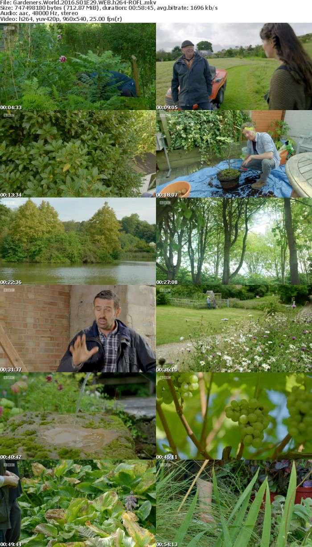 Gardeners World 2016 S01E29 WEB h264-ROFL