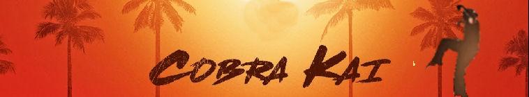 Cobra Kai S01E10 WEB h264-CONVOY