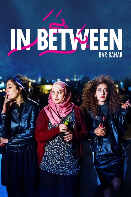 In Between 2016 LiMiTED DVDRip x264-LPD