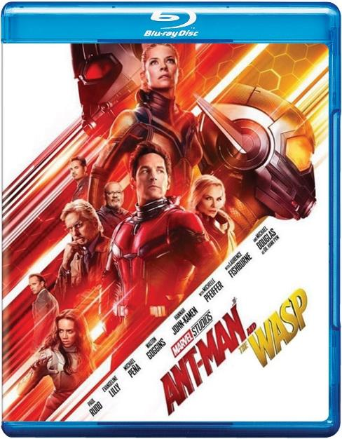 Ant-Man and the Wasp (2018) HDCAM Dual Audio [Hindi+English] 800MB-DLW