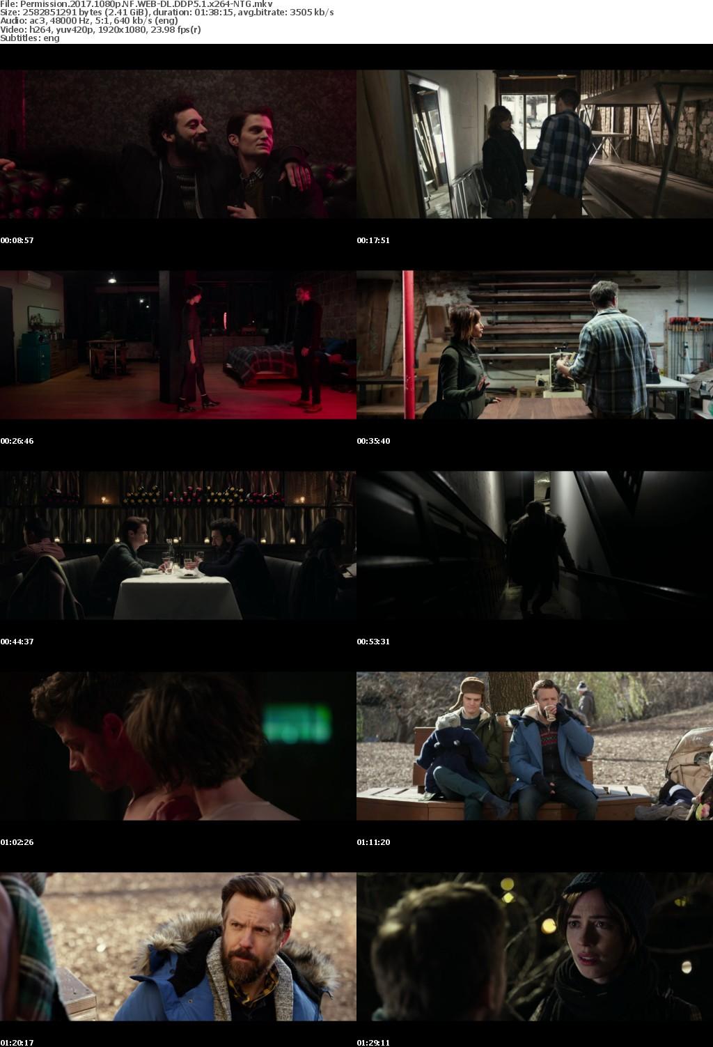 Permission (2017) 1080p NF WEB-DL DDP5.1 x264-NTG