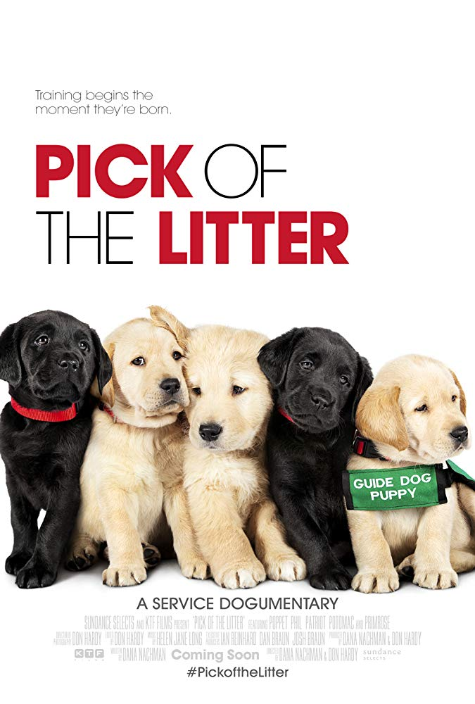 Pick of the Litter 2018 DOCU 1080p WEB-DL DD5 1 H264-FGT