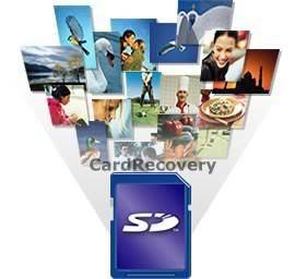 cardrecovery v5 30 registration key free download