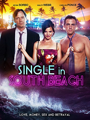 Single in South Beach 2015 1080p WEB-DL DD5 1 H264-FGT