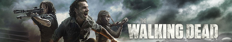 The Walking Dead S08E12 720p HDTV x264-AVS