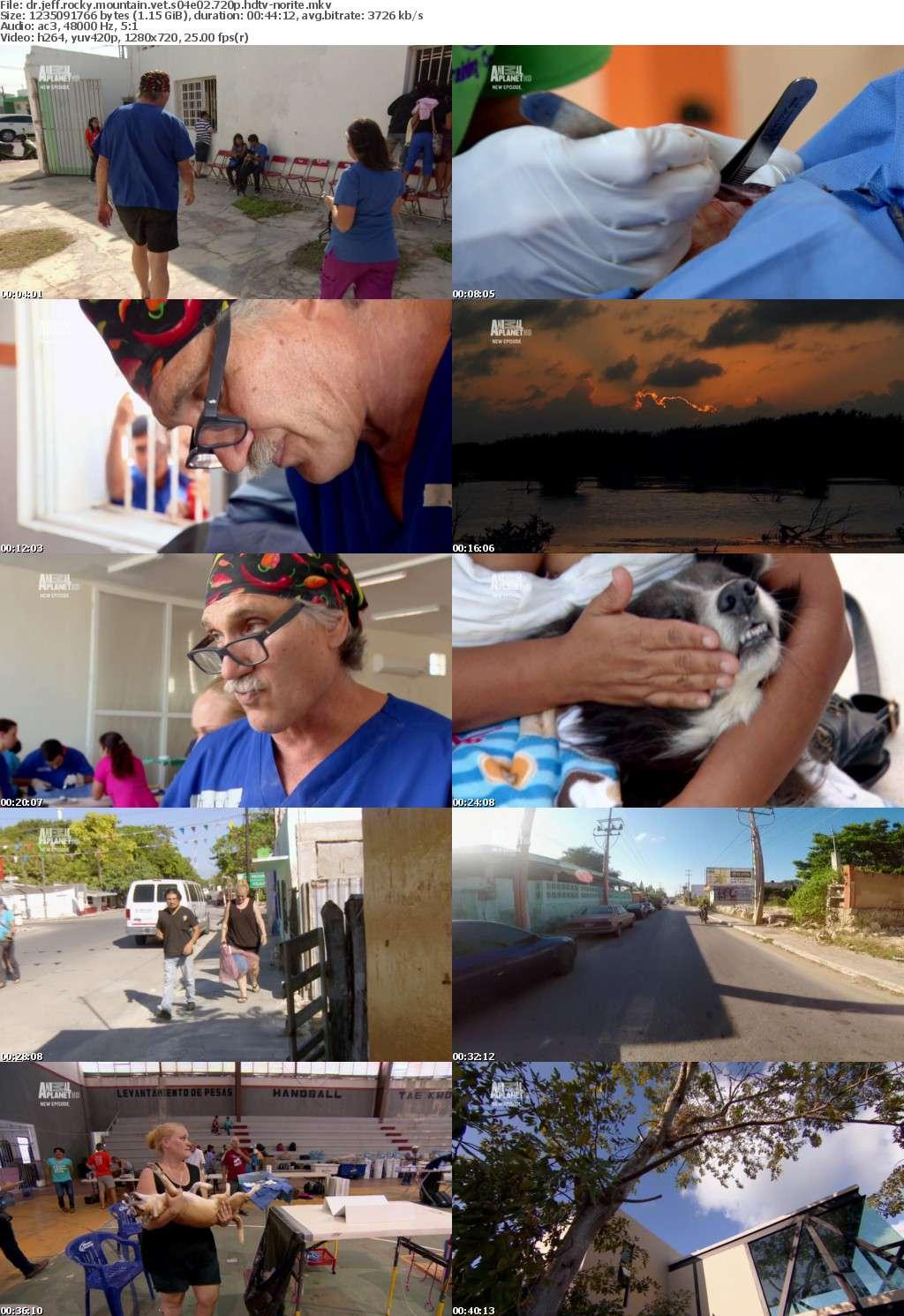 Dr Jeff Rocky Mountain Vet S04E02 720p HDTV x264-NORiTE