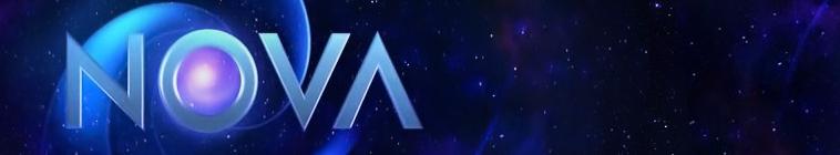 NOVA S28E17 Lifes Greatest Miracle 720p PBS WEB-DL AAC2 0 H 264