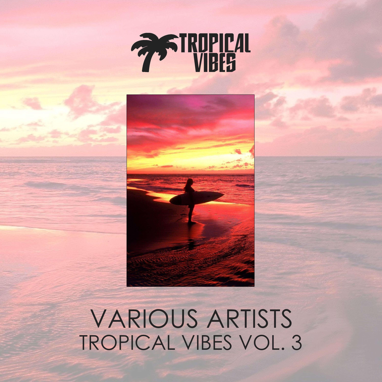 VA - Tropical Vibes vol 3 (2018)