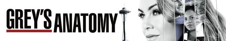 Greys Anatomy S14E24 HDTV x264-KILLERS