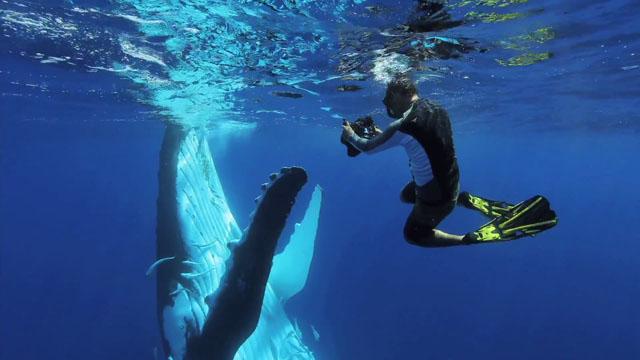 Submerged 2015 720p BluRay H264 AAC-RARBG