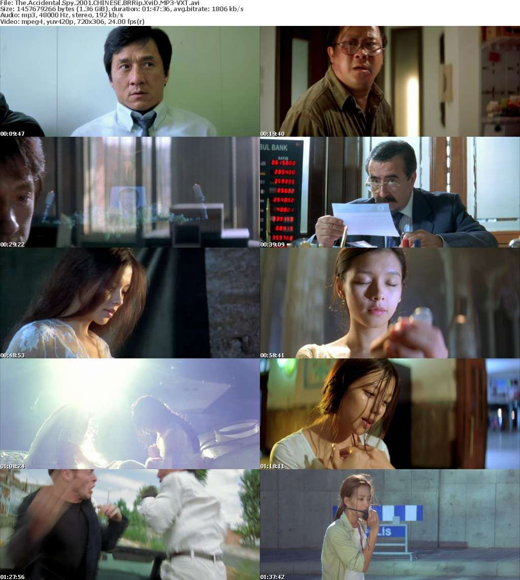 The Accidental Spy 2001 CHINESE BRRip XviD MP3-VXT