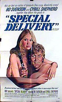 Special Delivery 1976 HDRIP H264 AC3-5 1-RypS