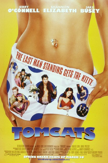 Tomcats 2001 BRRip XviD MP3-XVID