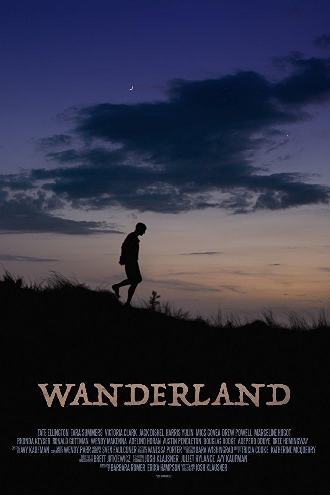 Wanderland 2018 720p AMZN WEB-DL DDP5 1 H 264-NTG