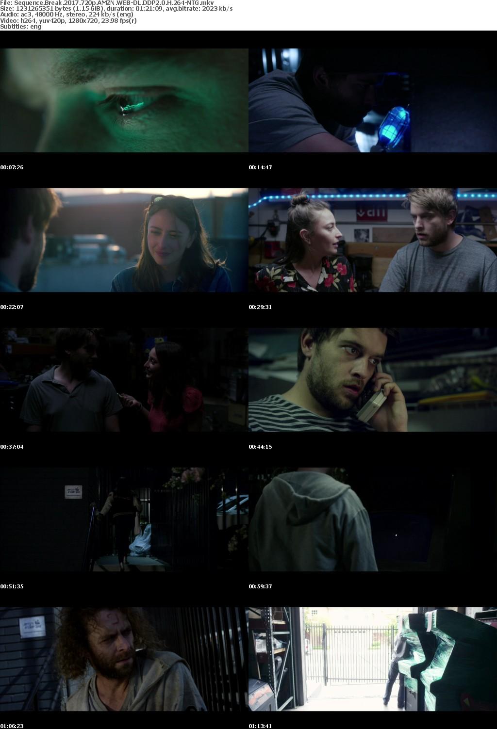 Sequence Break (2017) 720p AMZN WEB-DL DDP2.0 H264-NTG