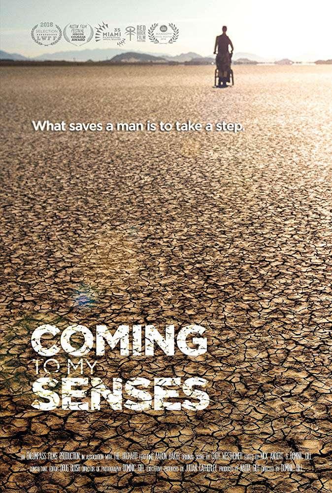 Coming to My Senses 2017 WEB x264-OMiCRON