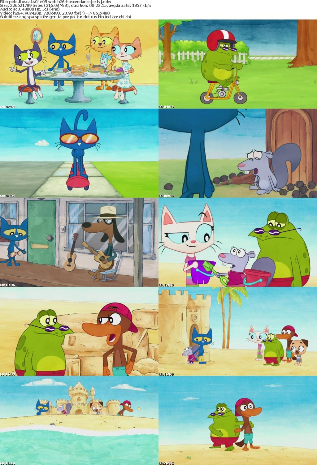 Pete The Cat S01E05 WEB h264-ASCENDANCE