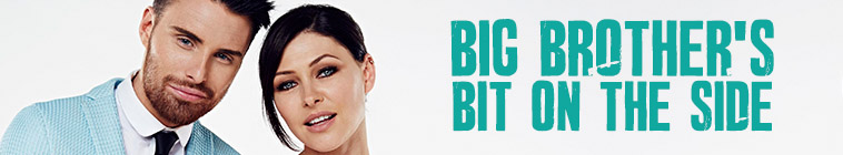 Big Brothers Bit On The Side S17E14 720p HDTV x264-PLUTONiUM