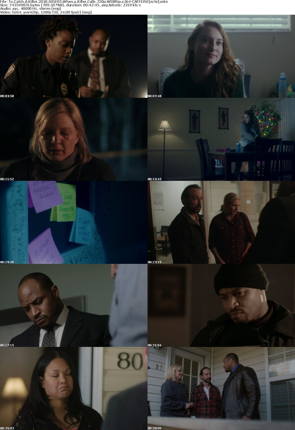To Catch A Killer 2018 S01E05 When a Killer Calls 720p WEBRip x264-CAFFEiNE