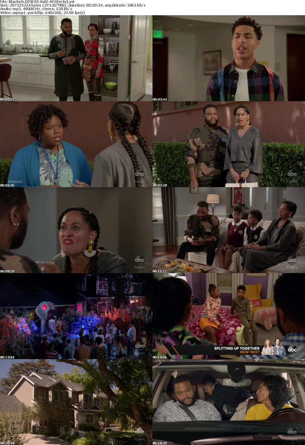 Blackish S05E03 XviD-AFG