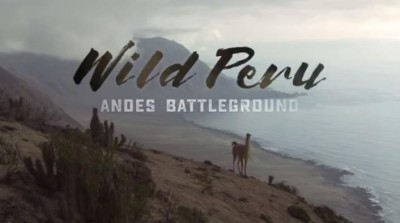 Wild Peru Andes Battleground S01E01 Wild Peruvian Coast 720p HDTV x264-CBFM