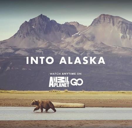 Into Alaska S01E10 End of Summer WEBRip x264-CAFFEiNE