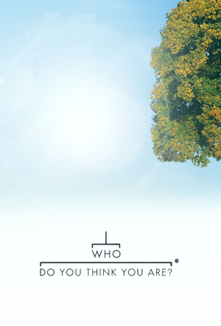 Who Do You Think You Are US S11E03 Regina King 480p x264-mSD
