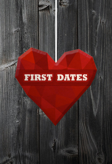 First Dates S11E00 First Dates At Christmas 480p x264-mSD