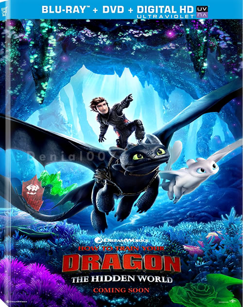 How to Train Your Dragon The Hidden World 2019 720p WEBRip x264 Dual Audio Hindi - English MW