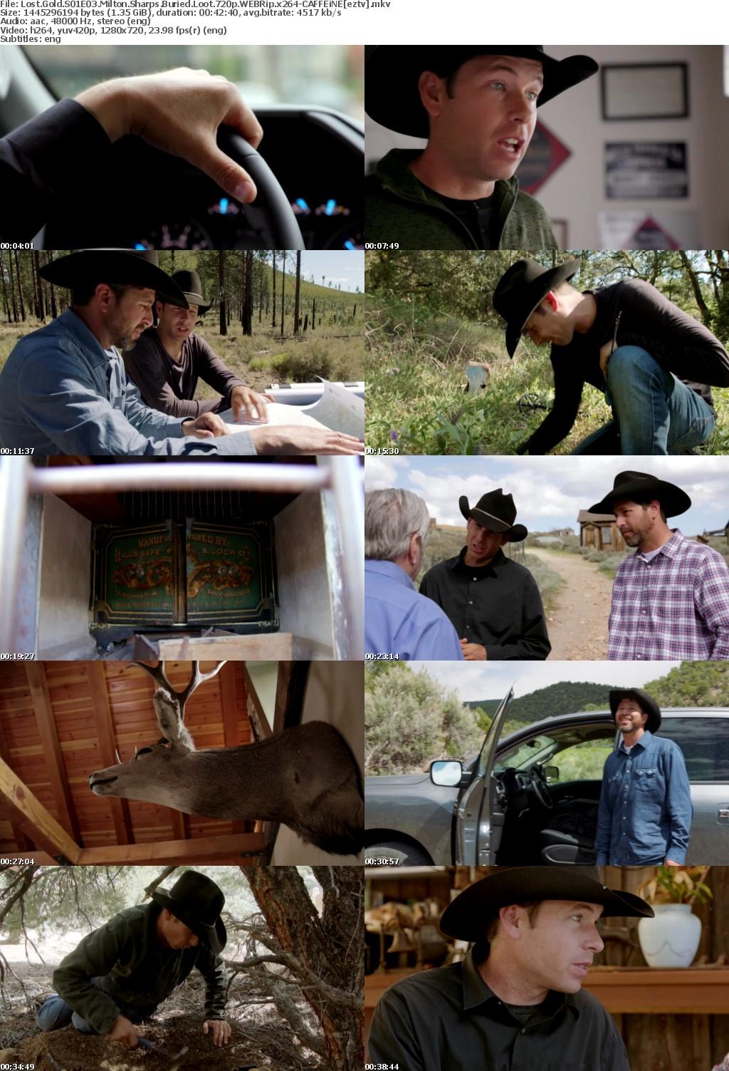 Lost Gold S01E03 Milton Sharps Buried Loot 720p WEBRip x264-CAFFEiNE