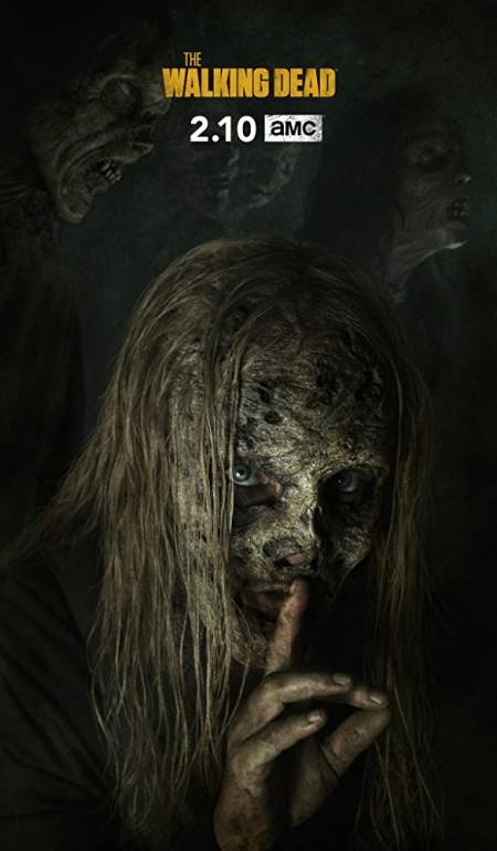 The Walking Dead S09E10 480p x264-mSD