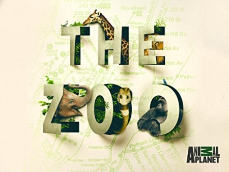 The Zoo US S03E05 Baby Bunnies Big World 480p x264  mSD